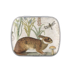 modern vintage french rabbit in the garden jelly belly tin at Zazzle