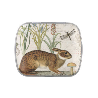 modern vintage french rabbit in the garden candy tins