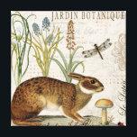 "modern vintage french rabbit in the garden canvas print<br><div class=""desc"">modern vintage french rabbit in the garden</div>"