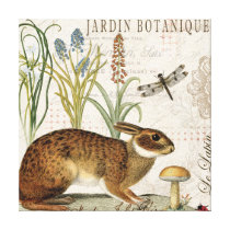modern vintage french rabbit in the garden canvas print