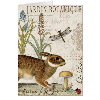 modern vintage french rabbit in the garden card