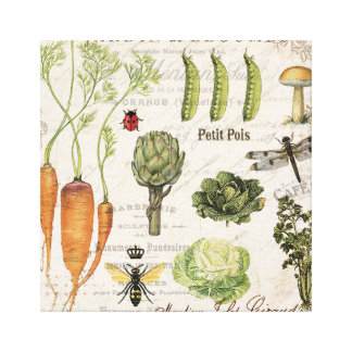 modern vintage french vegetable garden canvas print