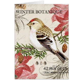 modern vintage french winter bird card