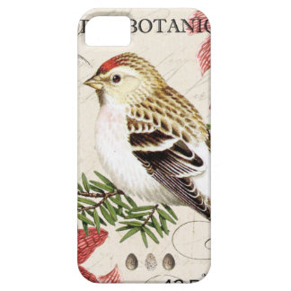 modern vintage french winter bird iPhone 5 cover
