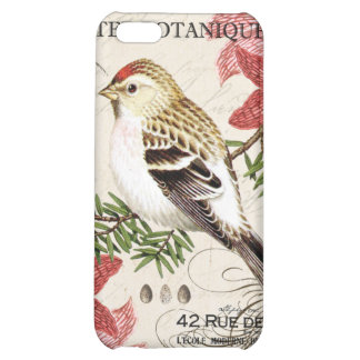 modern vintage french winter bird case for iPhone 5C