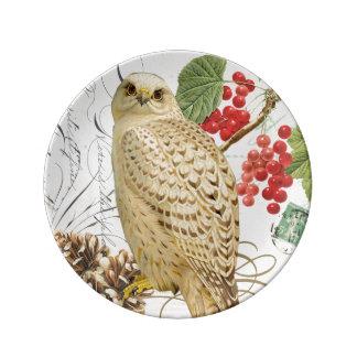 modern vintage french winter owl porcelain plates