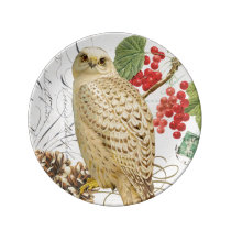 modern vintage french winter owl plate