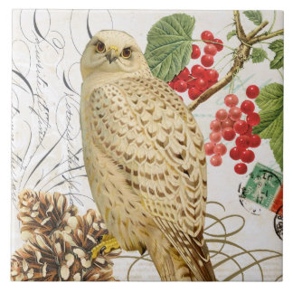 modern vintage french winter owl tile