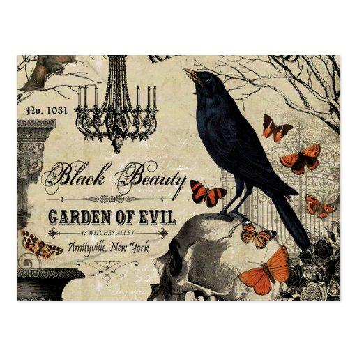 Crow And Cauldron Vintage Halloween: Modern Vintage Halloween Crow And Skull Postcard