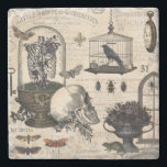 """Modern Vintage Halloween Garden Stone Coaster<br><div class=""""desc"""">Modern vintage Halloween garden.  Skulls,  flowers in urns,  raven in birdcage,  spooky insects and skull collage art. Sophisticated Halloween art</div>"""
