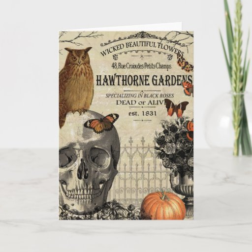 Modern vintage Halloween owl and skull Card