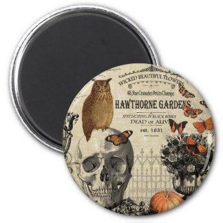Modern vintage Halloween owl and skull Magnet
