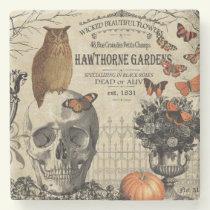 Modern vintage Halloween owl and skull Stone Coaster