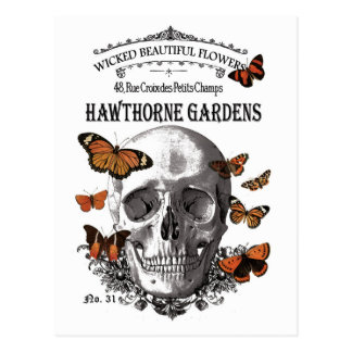 modern vintage Halloween skull and butterflies Postcard