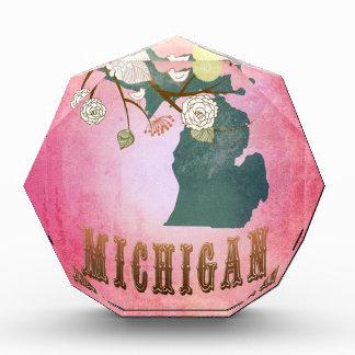 Modern Vintage Michigan State Map- Candy Pink Acrylic Award