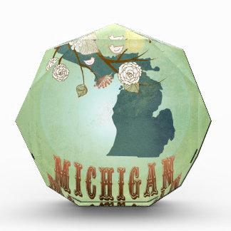 Modern Vintage Michigan State Map – Sage Green Awards