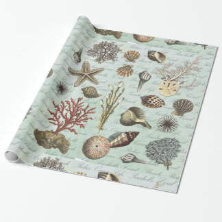Modern Vintage Seashells Gift Wrapping Paper