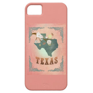Modern Vintage Texas State Map- Pastel Peach iPhone 5 Cases