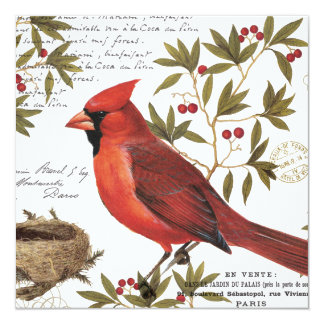 modern vintage winter cardinal card
