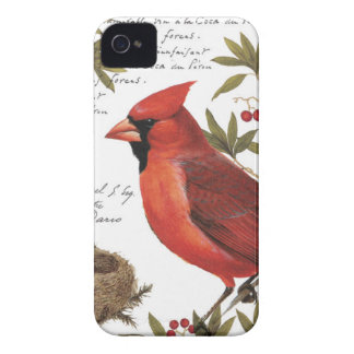 modern vintage winter cardinal iPhone 4 cover