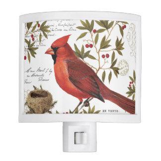 modern vintage winter cardinal night light