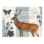 modern vintage woodland deer postcard