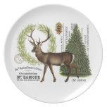 modern vintage woodland winter deer dinner plate