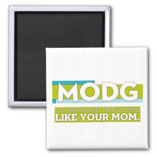 MODG magnet