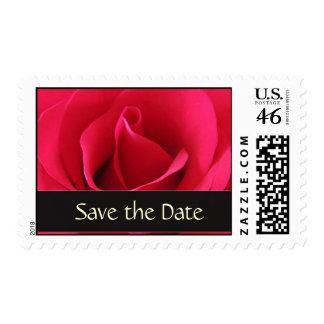 Modifique su propia reserva del boda para requisit sello