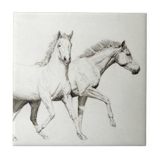 Modifique un caballo para requisitos particulares azulejo cuadrado pequeño