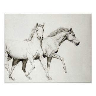 Modifique un caballo para requisitos particulares impresiones
