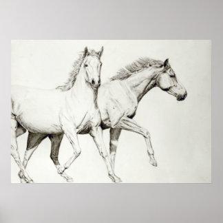Modifique un caballo para requisitos particulares poster