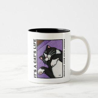 Modo de sueño - es la vida de un gato - taza del g