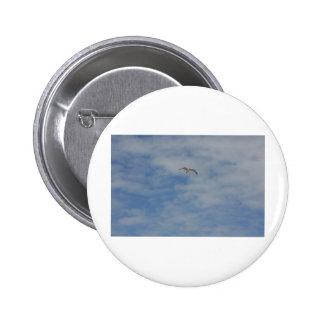 Moewe im Flug Buttons