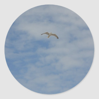 Moewe im Flug Classic Round Sticker