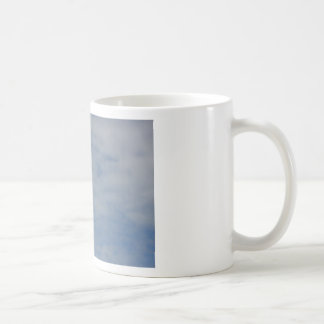 Moewe im Flug Coffee Mugs