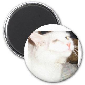 Moglie 2 Inch Round Magnet
