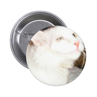Moglie Pin