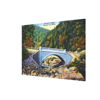 Mohawk Trail View of Cold River Bridge Canvas Print