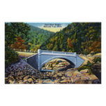 Mohawk Trail View of Cold River Bridge Poster