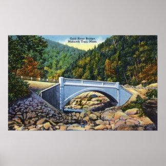 Mohawk Trail View of Cold River Bridge Poster