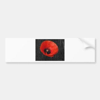 Mohnblume red poppy Photo Foto Bumper Sticker