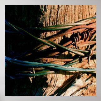 Moho y alambre de púas azul póster