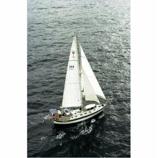 Moira Under Sail Cutout