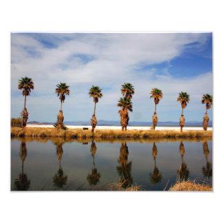 Mojave Desert 11x14 Landscape Photographic Print