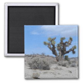 Mojave Desert 2 Inch Square Magnet