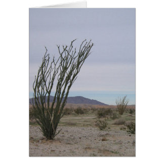 Mojave Desert Card