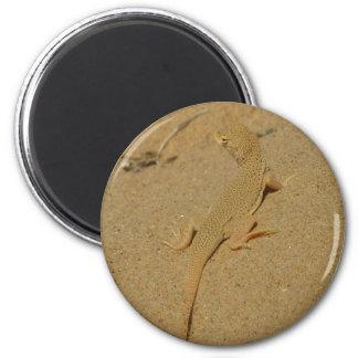 Mojave Fringe-Toed Lizard Desert Photography 2 Inch Round Magnet