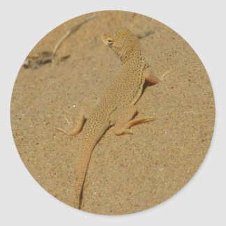 Mojave Fringe-Toed Lizard Desert Photography Classic Round Sticker