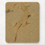 Mojave Fringe-Toed Lizard Desert Photography Mouse Pad